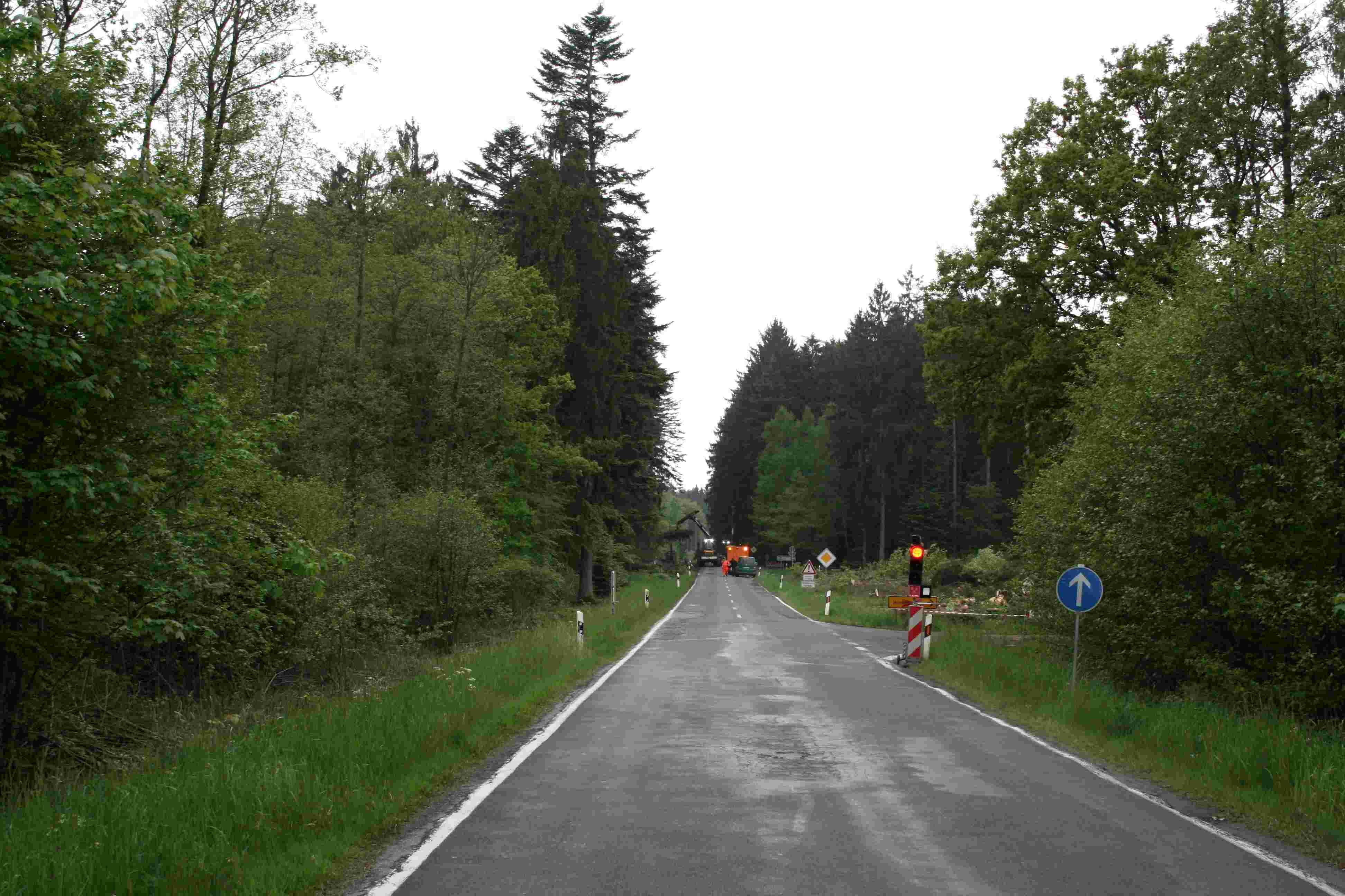 rodungsarbeiten-an-der-l-226-24-mai-2016-mit-ampel